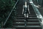 Kitty downing the stairs by AndyPPhotography