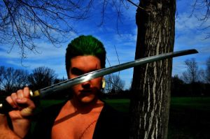 Zoro Roronoa New World two Years Later Cosplay by SidneyRobin
