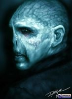 Lord Voldemort by unlimitedvisual