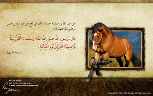 Horse in Islam by LMA-Design