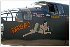 B25J Mitchell Nose Art by shawn529