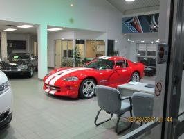 VIPER in show room sold :( by catsvsfox