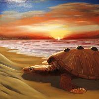Toxochelys final by NathanLParker