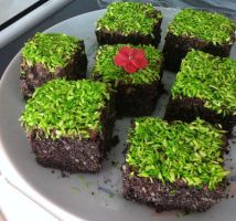 Minecraft earth block chocolate cakes by Aphilien