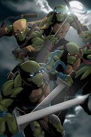 Ninja Turtles by Niyoarts