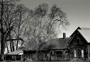Wicked and old... by wolfcreek50