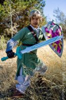 SS Link: Sword and Shield by effektdmentality