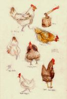 Hens by Izzy95