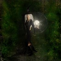 Witch - PS+Brushs by Valadj
