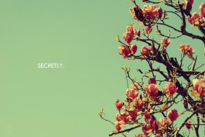 Secretly by phferreira