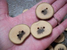 Magnolia Buttons by PymatuningCrafts