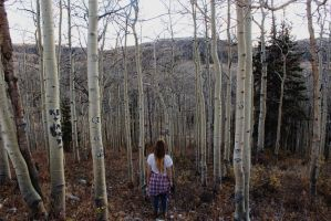 With The Aspens by MandaIrene