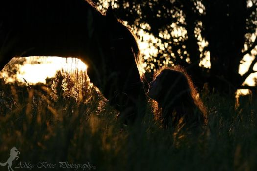 A Lady and her Horse by A-Krive-Photography