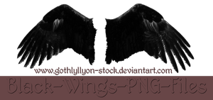 Black Wings-by-GothLyllyOn-Stock by GothLyllyOn-Sotck