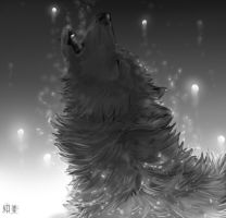 Howl by HauRin