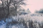 The snow prelude by anylife