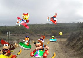 Diddy Kong Racing by Toxic-Mario