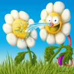 daisy time by klori