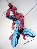 SPIDERMAN by SJK75