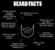 Beard Facts by Odme1