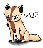 What? by InuKii