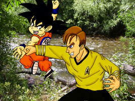 Son Goku VS James T. Kirk by sonigoku