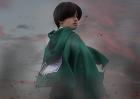 Attack on Titan by Aislou