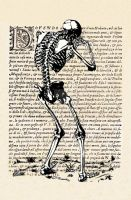 Human skeleton. by medievaloccultart
