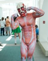 The colossal Titan! by EriTesPhoto
