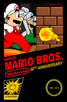 Super Mario Bros. 30th Anniversary Poster by SuperSmash3DS