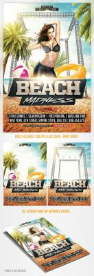 Summer Beach Madness Flyer Template by saltshaker911