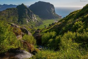 Green Nordland by acoresjo88