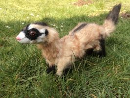 Marty, the blackfooted ferret NEW VERSION by Kreativjunkie