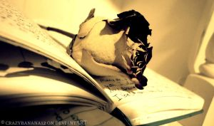 365 Project-Day 32: Writing Of A Dried Rose by hourglass-paperboats
