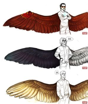 Avengers Wing AU-Designs Part 1 by Cranity