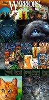 Warrior cats custom box free by Official-Fallblossom