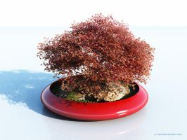 Bonsai by 2753Productions