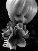 For The Love Of Flowers by odoll