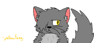 Young YellowFang. by TheSoulKeeperz
