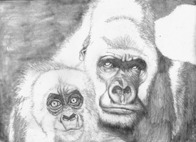 Gorilla with cub SKETCH by Yankeestyle94