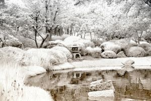 White Japanese Garden by helios-spada