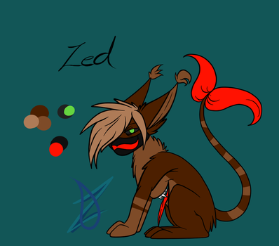 Zed ~ reference sheet. by LadyZoey
