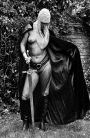 Black and white knight by dartmoor4
