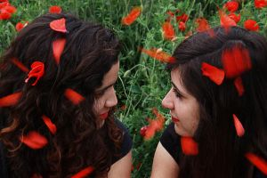 Jolis coquelicots III by Suave-Illusion