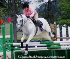 Warmblood 5 by EquineStockImagery