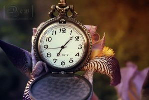 Time, it needs time by head-in-the-cloud