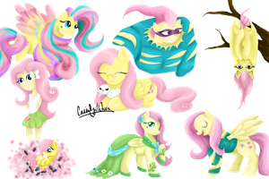 Ode to Fluttershy by HoodedTomsi