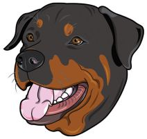 Rottweiler by nancy-kelpie
