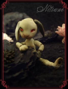 The rabbit of the apocalypse by TendresChimeres