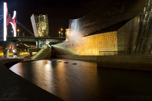Bilbao at night Color by EternityGoetia